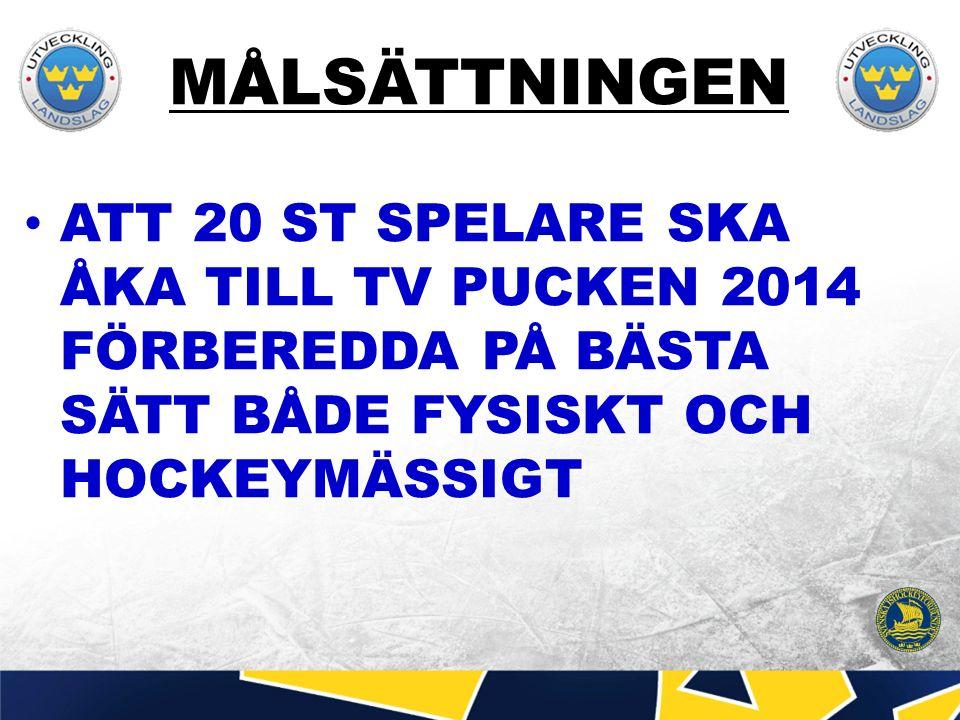 MÅLSÄTTNINGEN ATT 20 ST SPELARE SKA ÅKA TILL TV PUCKEN 2014 FÖRBEREDDA PÅ BÄSTA SÄTT BÅDE FYSISKT OCH HOCKEYMÄSSIGT