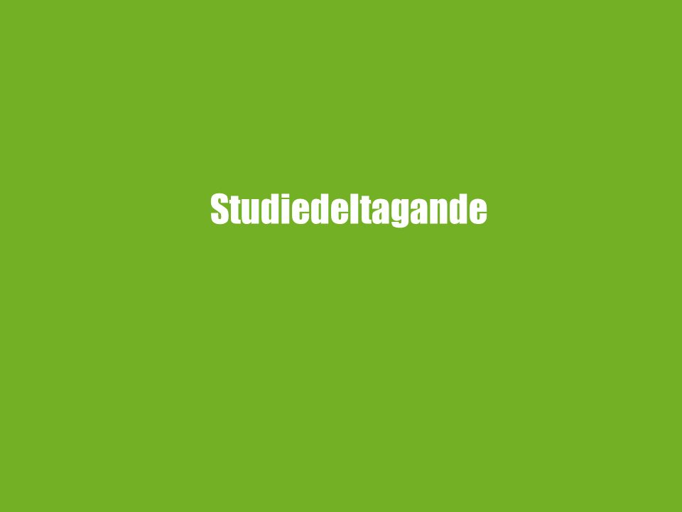 Studiedeltagande