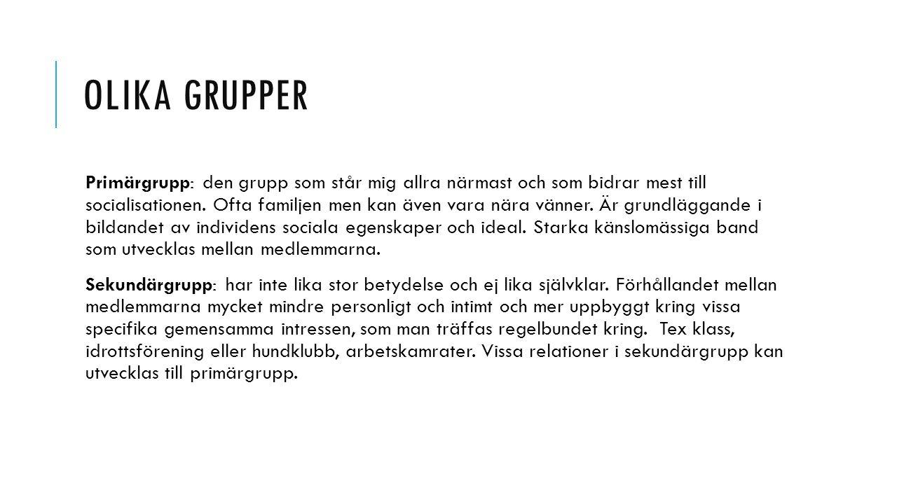 OLIKA GRUPPER Medlemsgrupp: kallas de grupper man är medlem i.