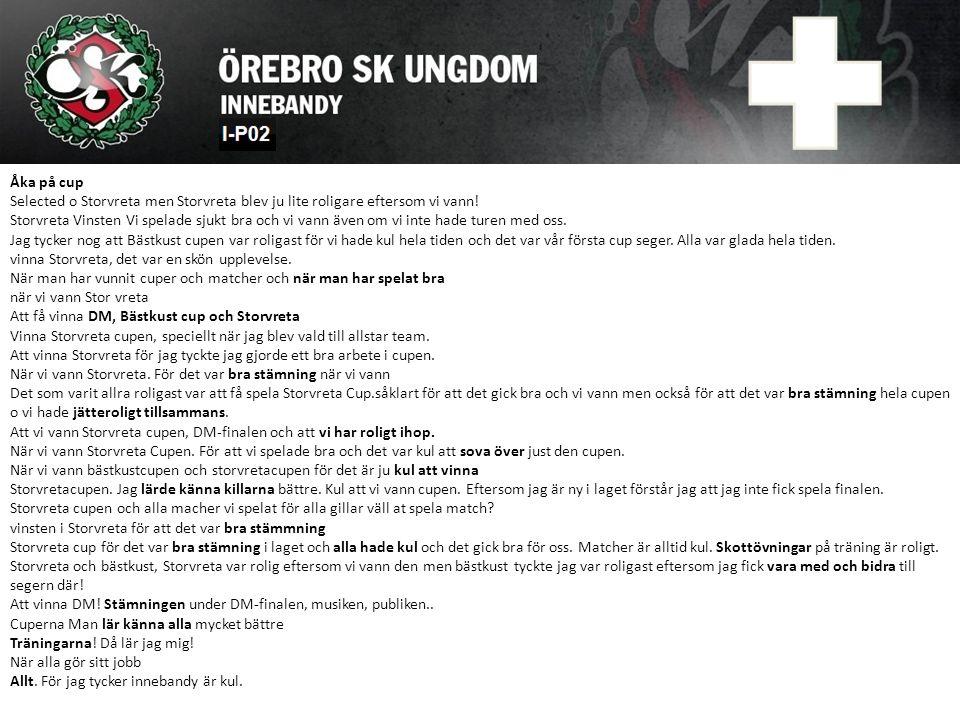 Åka på cup Selected o Storvreta men Storvreta blev ju lite roligare eftersom vi vann! Storvreta Vinsten Vi spelade sjukt bra och vi vann även om vi in