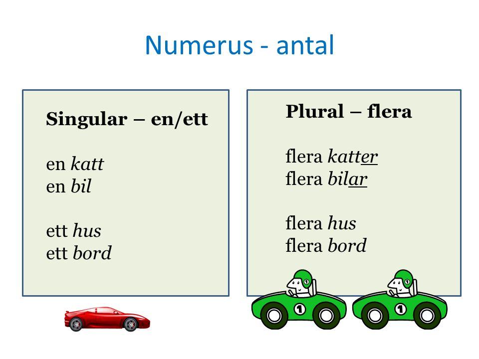 Numerus - antal Singular – en/ett en katt en bil ett hus ett bord Plural – flera flera katter flera bilar flera hus flera bord