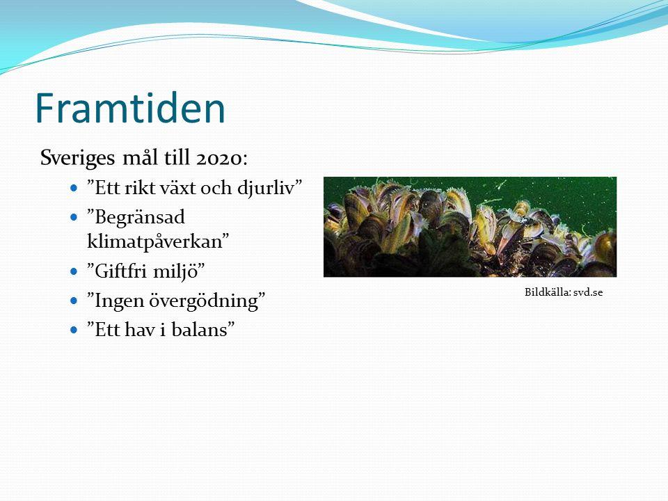 Framtiden Sveriges mål till 2020: Ett rikt växt och djurliv Begränsad klimatpåverkan Giftfri miljö Ingen övergödning Ett hav i balans Bildkälla: svd.se