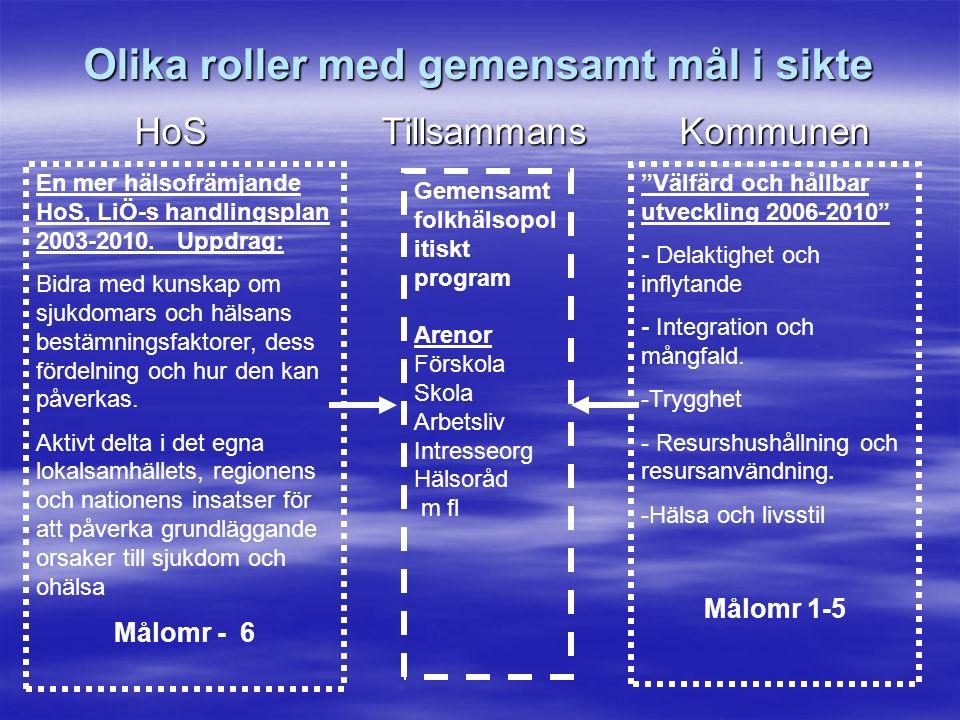 Olika roller med gemensamt mål i sikte HoS Tillsammans Kommunen HoS Tillsammans Kommunen En mer hälsofrämjande HoS, LiÖ-s handlingsplan 2003-2010.