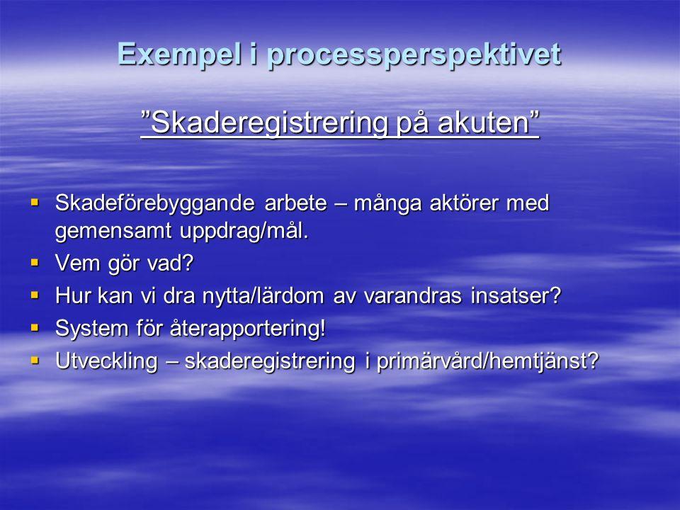 Exempel i processperspektivet Skaderegistrering på akuten  Skadeförebyggande arbete – många aktörer med gemensamt uppdrag/mål.