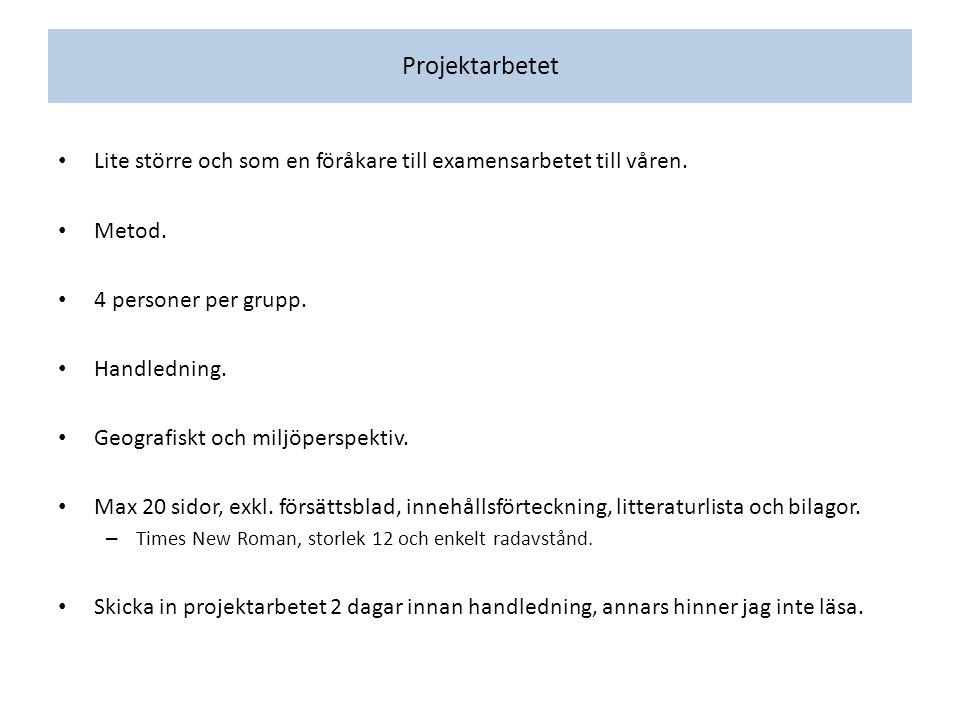 Projektarbetet Lite större och som en föråkare till examensarbetet till våren.