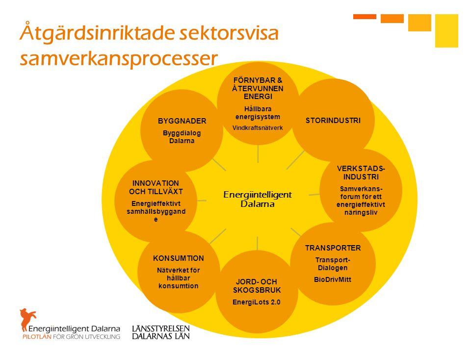 Åtgärdsinriktade sektorsvisa samverkansprocesser