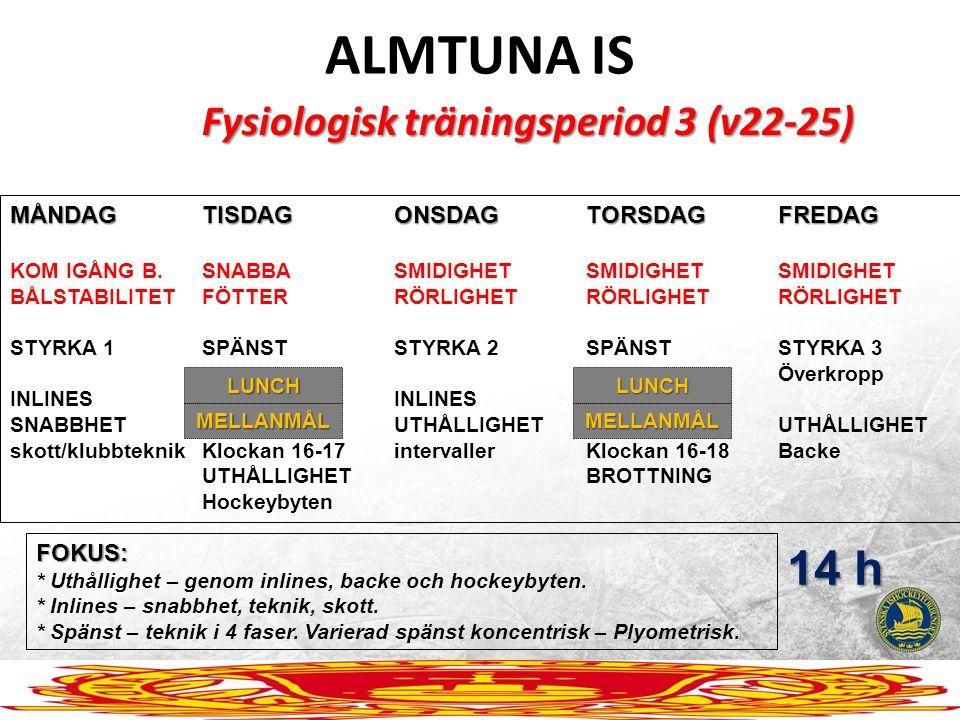 ALMTUNA IS Fysiologisk träningsperiod 3 (v22-25) MÅNDAGTISDAGONSDAGTORSDAGFREDAG KOM IGÅNG B.SNABBASMIDIGHETSMIDIGHETSMIDIGHET BÅLSTABILITETFÖTTERRÖRL