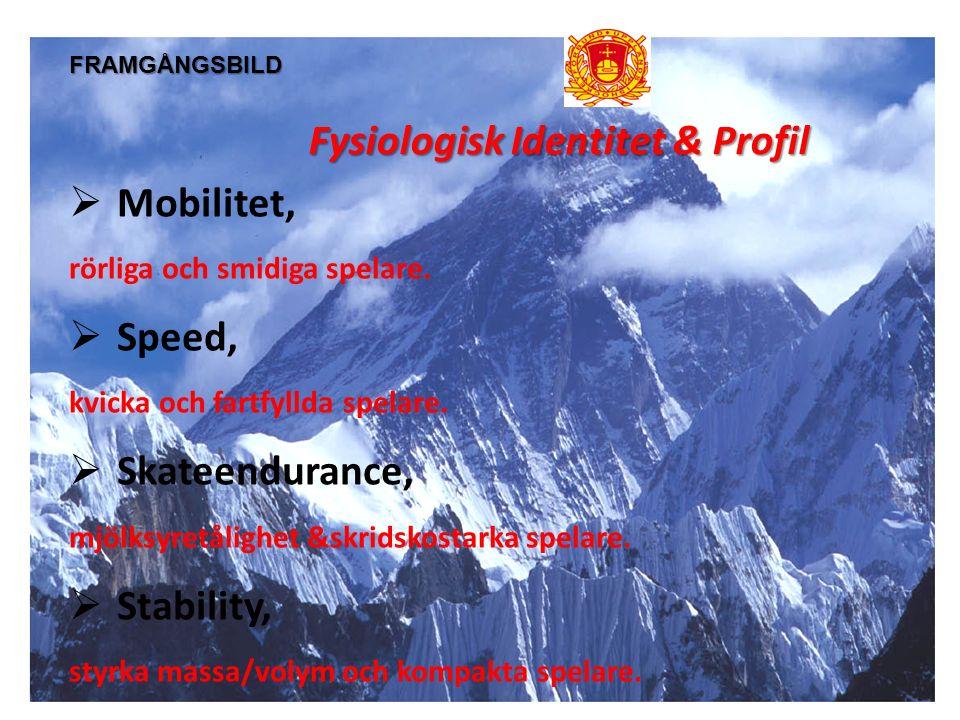 FRAMGÅNGSBILD Fysiologisk Identitet & Profil  Mobilitet, rörliga och smidiga spelare.  Speed, kvicka och fartfyllda spelare.  Skateendurance, mjölk