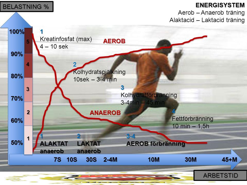 ENERGISYSTEM ENERGISYSTEM Aerob – Anaerob träning Alaktacid – Laktacid träning BELASTNING % ARBETSTID 100% 90% 80% 70% 60%50% 7S 10S30S 2-4M10M30M45+M