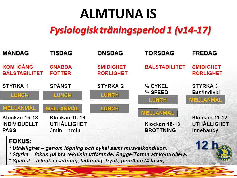 ALMTUNA IS Fysiologisk träningsperiod 1 (v14-17) MÅNDAGTISDAGONSDAGTORSDAGFREDAG KOM IGÅNGSNABBASMIDIGHETBÅLSTABILITETSMIDIGHET BÅLSTABILITETFÖTTERRÖR