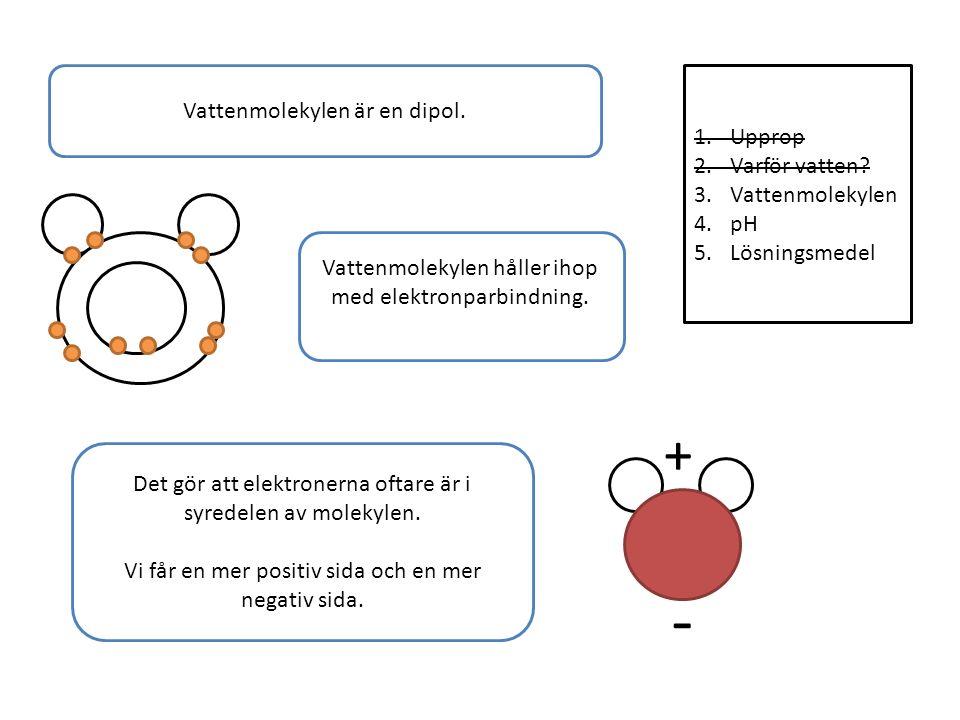 1.Upprop 2.Varför vatten. 3.Vattenmolekylen 4.pH 5.Lösningsmedel Vattenmolekylen är en dipol.