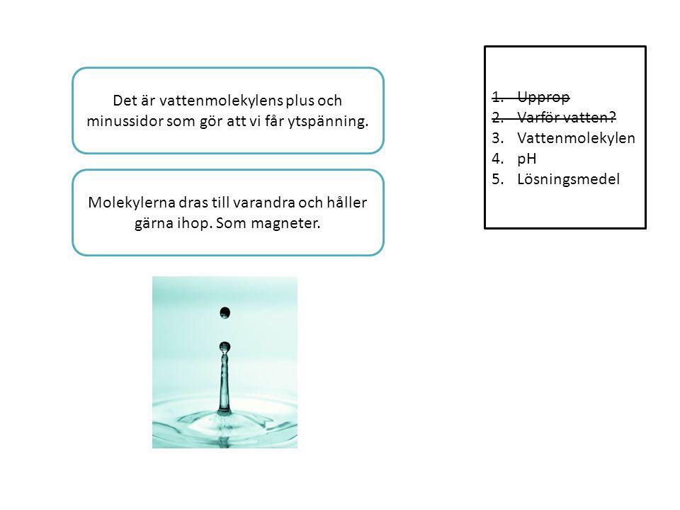 1.Upprop 2.Varför vatten.