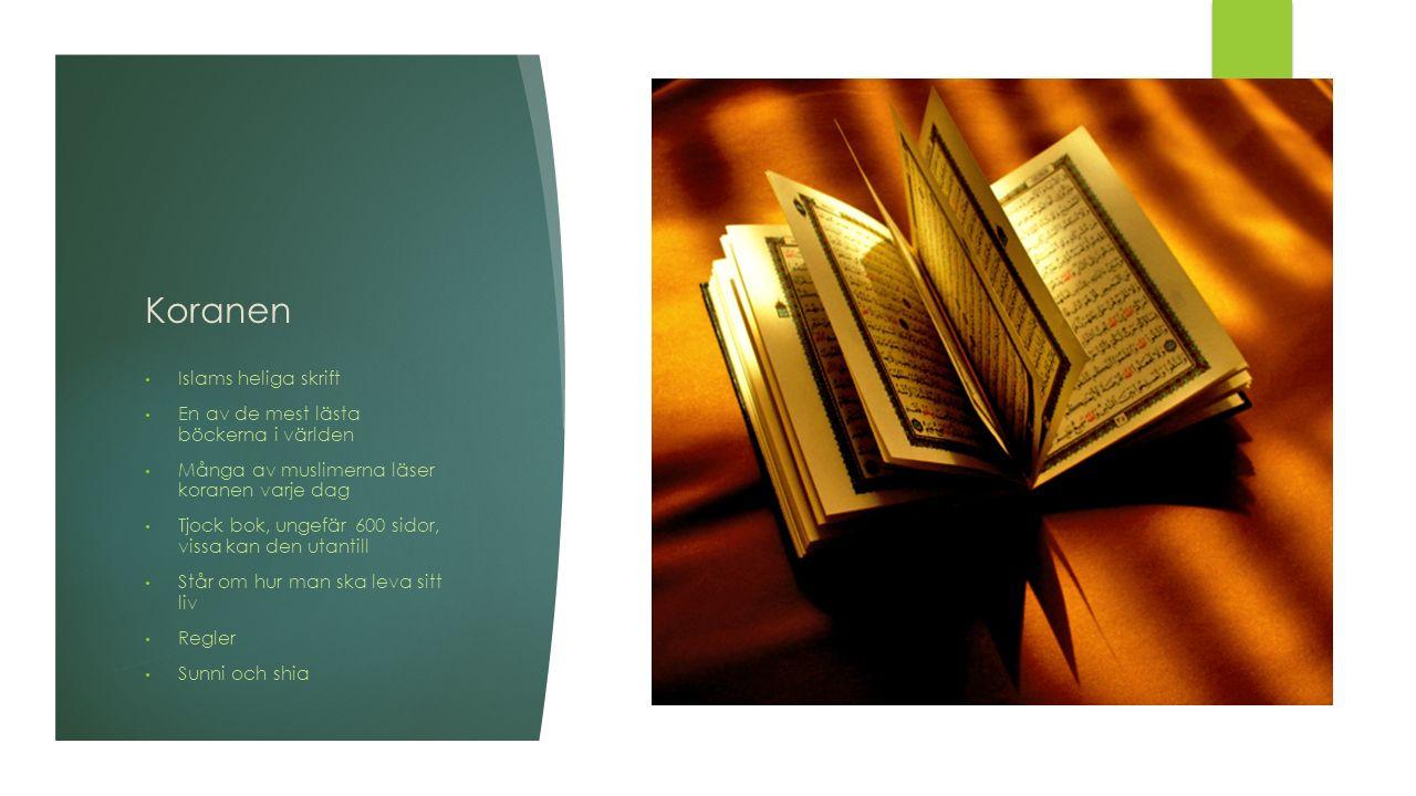 Koranen Islams heliga skrift En av de mest lästa böckerna i världen Många av muslimerna läser koranen varje dag Tjock bok, ungefär 600 sidor, vissa kan den utantill Står om hur man ska leva sitt liv Regler Sunni och shia