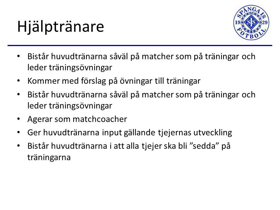 Huvudtränare Planerar och genomför träningar Agerar som matchcoacher Utser vilka tjejer som kallas till vilka matcher och cuper Ansvarar för samtliga lag i Sanktan och cuper.
