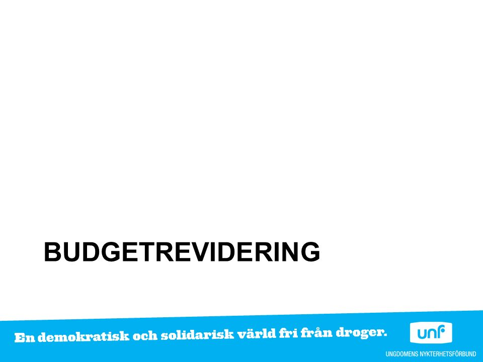 BUDGETREVIDERING