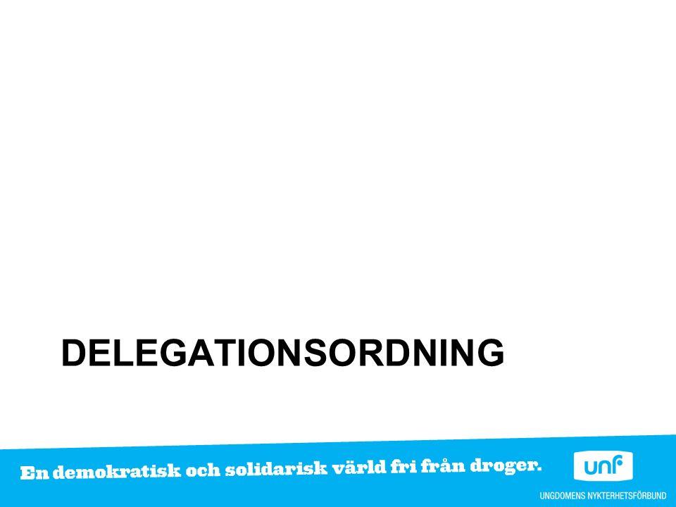 DELEGATIONSORDNING