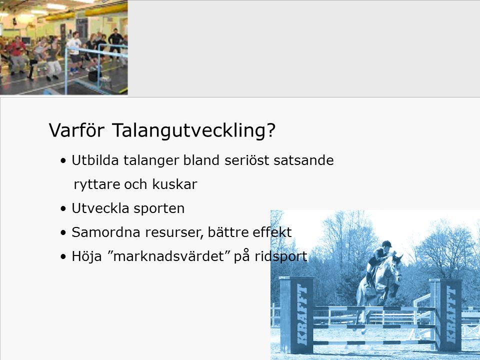 Vad är Future Factory.Hur driver vi Talangutveckling.