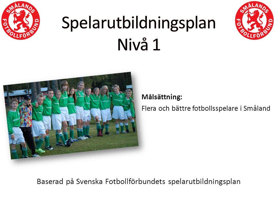 Målsättning: Flera och bättre fotbollsspelare i Småland Baserad på Svenska Fotbollförbundets spelarutbildningsplan