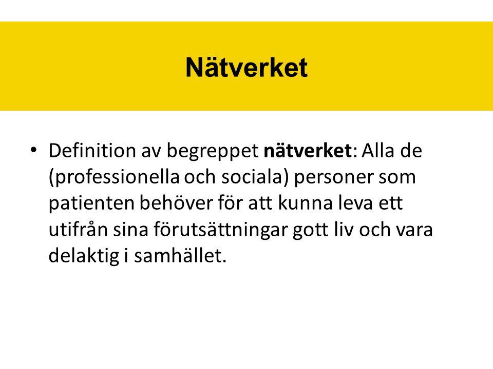 Definition av begreppet nätverket: Alla de (professionella och sociala) personer som patienten behöver för att kunna leva ett utifrån sina förutsättningar gott liv och vara delaktig i samhället.