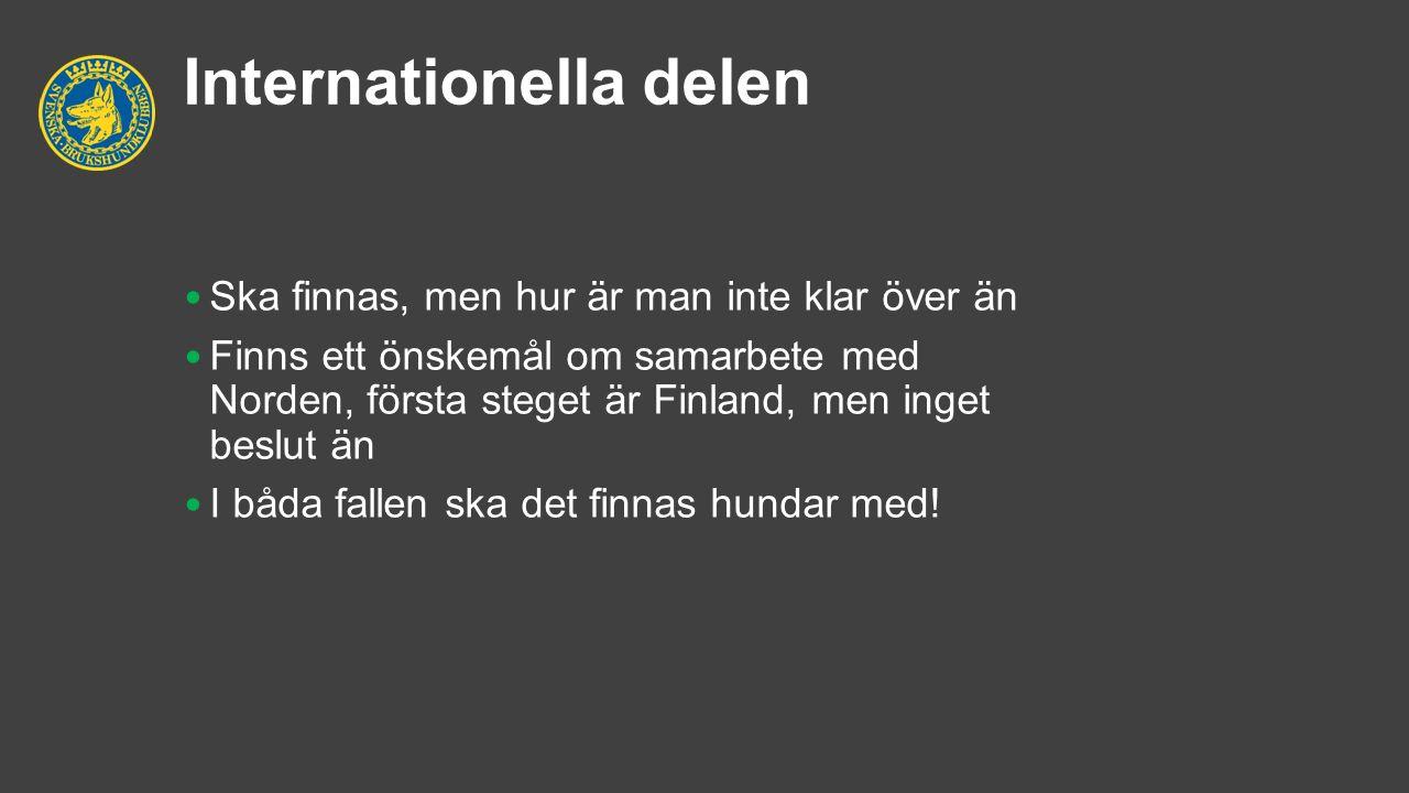 Internationella delen Ska finnas, men hur är man inte klar över än Finns ett önskemål om samarbete med Norden, första steget är Finland, men inget beslut än I båda fallen ska det finnas hundar med!