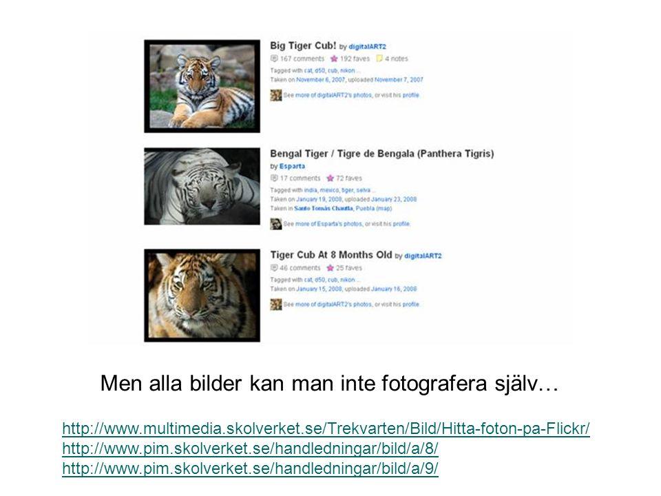 Men alla bilder kan man inte fotografera själv… http://www.multimedia.skolverket.se/Trekvarten/Bild/Hitta-foton-pa-Flickr/ http://www.pim.skolverket.s