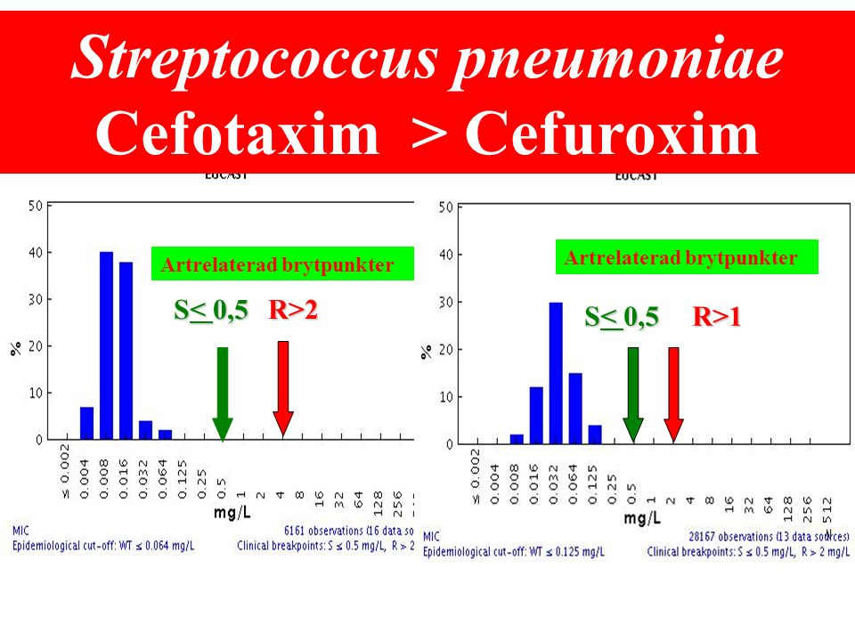 Cefalosporiner vs Pip/tazo We conclude that the replacement of ceftazidime by piperacillin tazobactam might be a suitable strategy to decrease endemic CEP resistance by K.