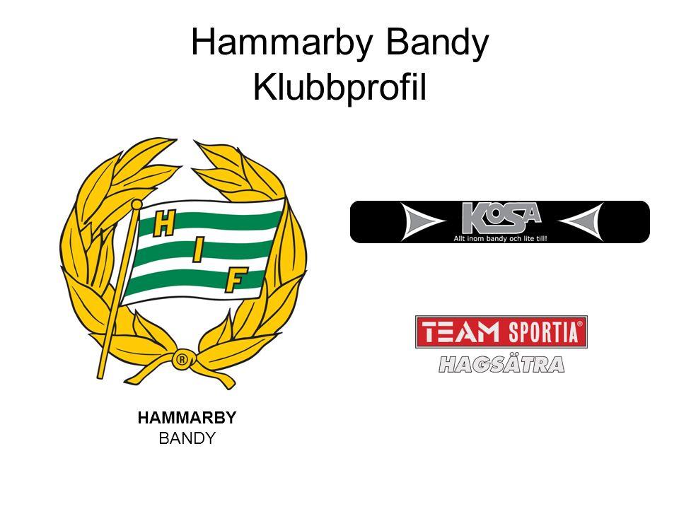 Hammarby Bandy Klubbprofil HAMMARBY BANDY