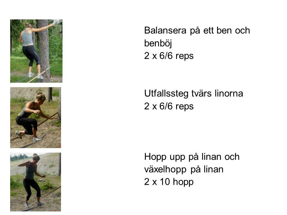 Balansera på ett ben och benböj 2 x 6/6 reps Utfallssteg tvärs linorna 2 x 6/6 reps Hopp upp på linan och växelhopp på linan 2 x 10 hopp