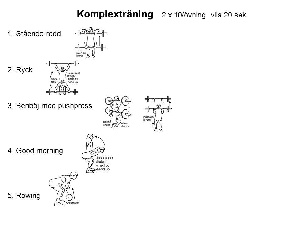 Komplexträning 2 x 10/övning vila 20 sek. 1. Stående rodd 2.