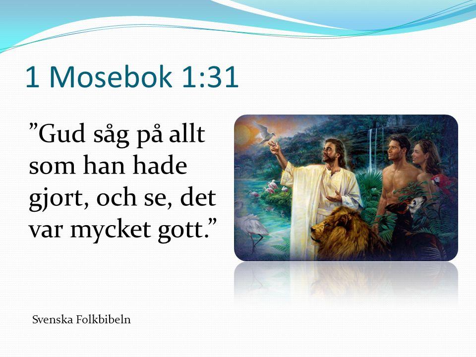 1 Mosebok 1:31 Gud såg på allt som han hade gjort, och se, det var mycket gott. Svenska Folkbibeln