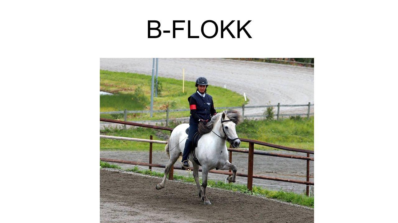B-FLOKK