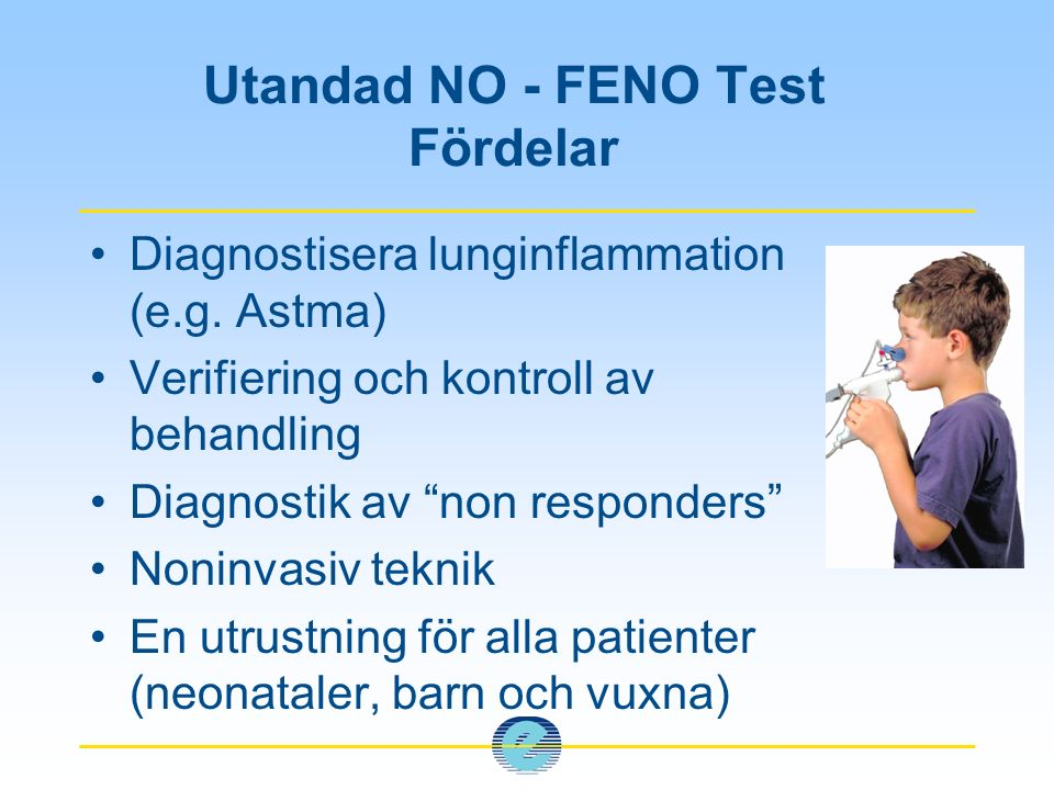 Introduktion Ledande inom exakt mätning av:  Kvävemonoxid (NO)  Flöde och volymer Innovativa produkter för:  Lungfunktionstest för småbarn  NO-mätning  Vetenskaplig forskning