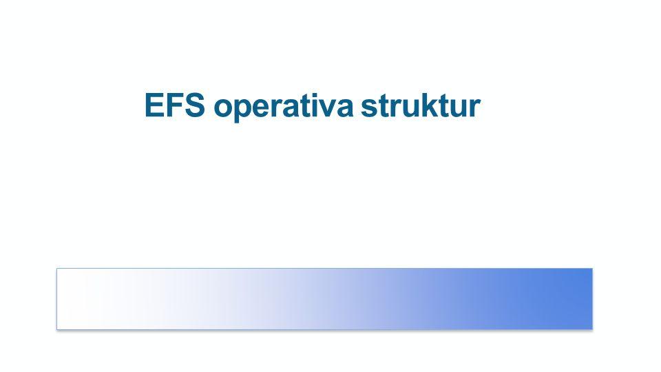 EFS operativa struktur