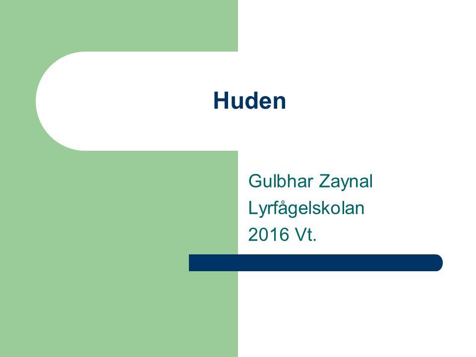 Huden Gulbhar Zaynal Lyrfågelskolan 2016 Vt.