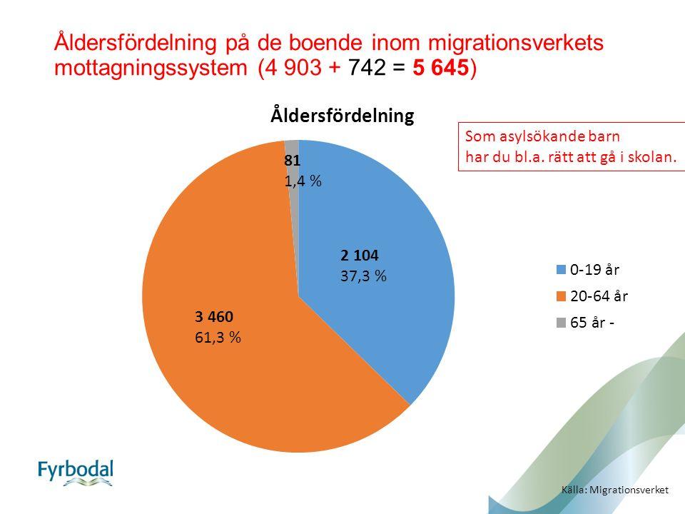 Åldersfördelning på de boende inom migrationsverkets mottagningssystem (4 903 + 742 = 5 645) 2 104 37,3 % 3 460 61,3 % 81 1,4 % Källa: Migrationsverket Som asylsökande barn har du bl.a.