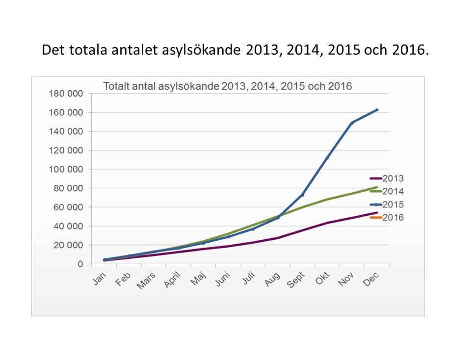 Det totala antalet asylsökande 2013, 2014, 2015 och 2016.