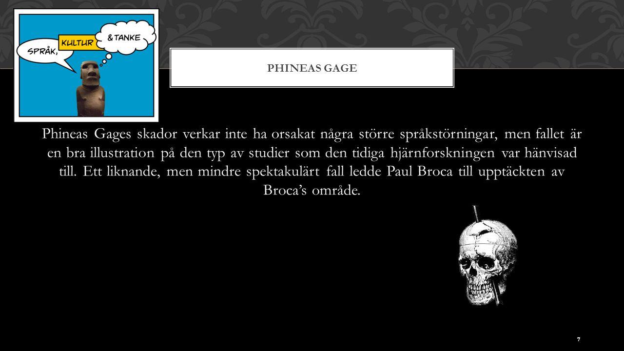 PHINEAS GAGE Phineas Gages skador verkar inte ha orsakat några större språkstörningar, men fallet är en bra illustration på den typ av studier som den tidiga hjärnforskningen var hänvisad till.