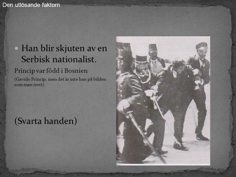 Han blir skjuten av en Serbisk nationalist.