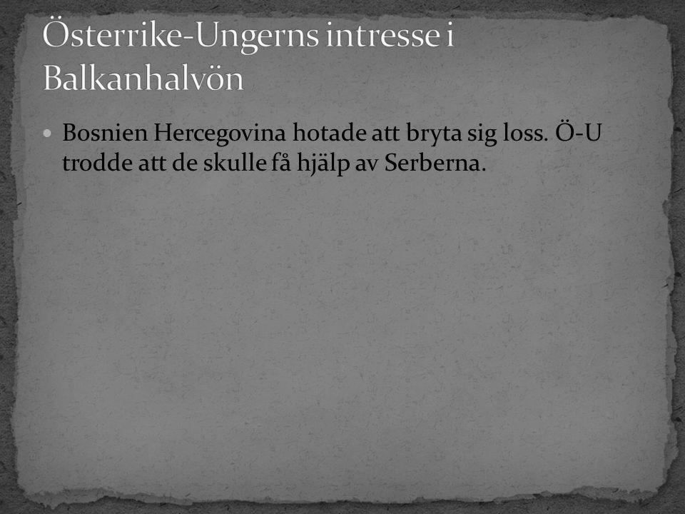 Bosnien Hercegovina hotade att bryta sig loss. Ö-U trodde att de skulle få hjälp av Serberna.