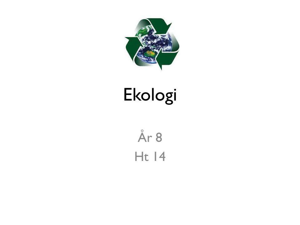 Ekologi År 8 Ht 14
