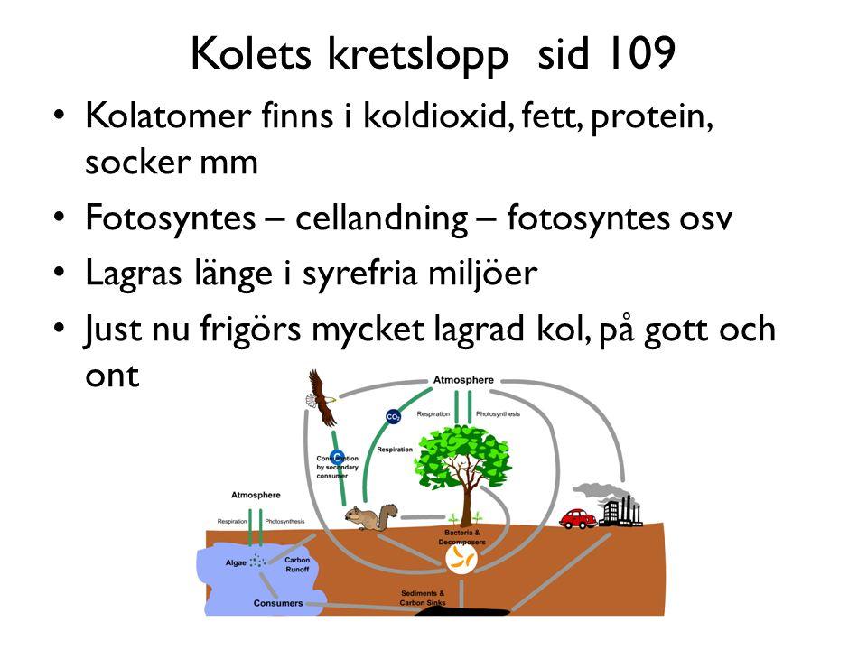 Kolets kretslopp sid 109 Kolatomer finns i koldioxid, fett, protein, socker mm Fotosyntes – cellandning – fotosyntes osv Lagras länge i syrefria miljöer Just nu frigörs mycket lagrad kol, på gott och ont