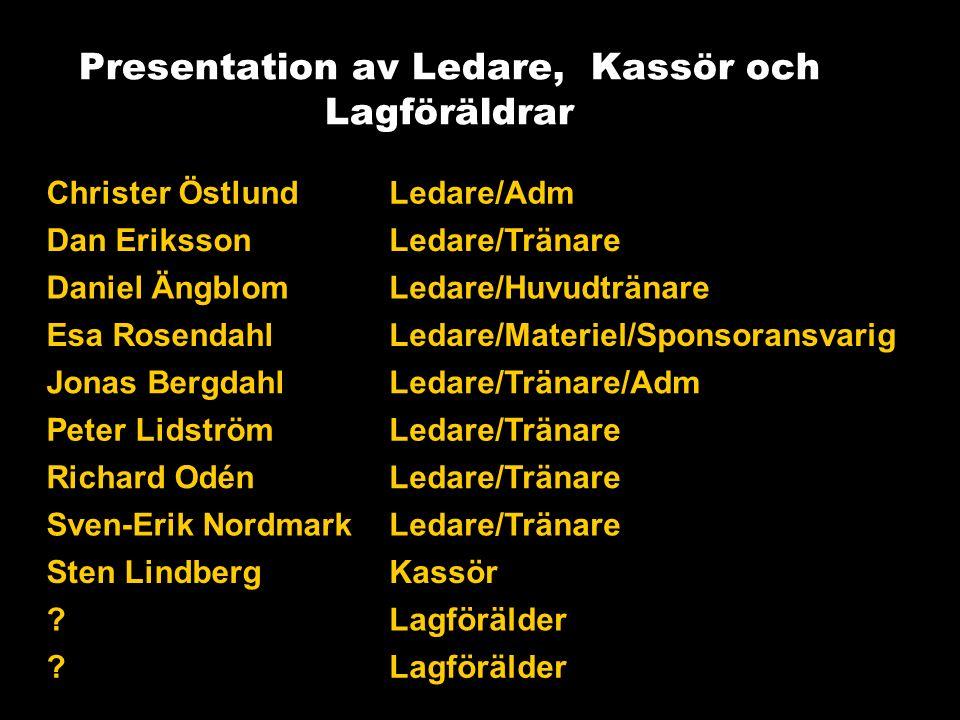 Spelartruppen Vi är idag 39 redovisade spelare (Hamre, Talltorp och Brandthovda), men vi har några nya som påbörjat träning och vi räknar med att bli 1-2 stycken till när säsongen startar (Lillhamra).