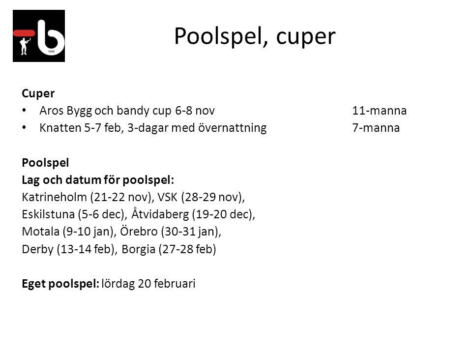 Poolspel, cuper Cuper Aros Bygg och bandy cup 6-8 nov11-manna Knatten 5-7 feb, 3-dagar med övernattning7-manna Poolspel Lag och datum för poolspel: Katrineholm (21-22 nov), VSK (28-29 nov), Eskilstuna (5-6 dec), Åtvidaberg (19-20 dec), Motala (9-10 jan), Örebro (30-31 jan), Derby (13-14 feb), Borgia (27-28 feb) Eget poolspel: lördag 20 februari