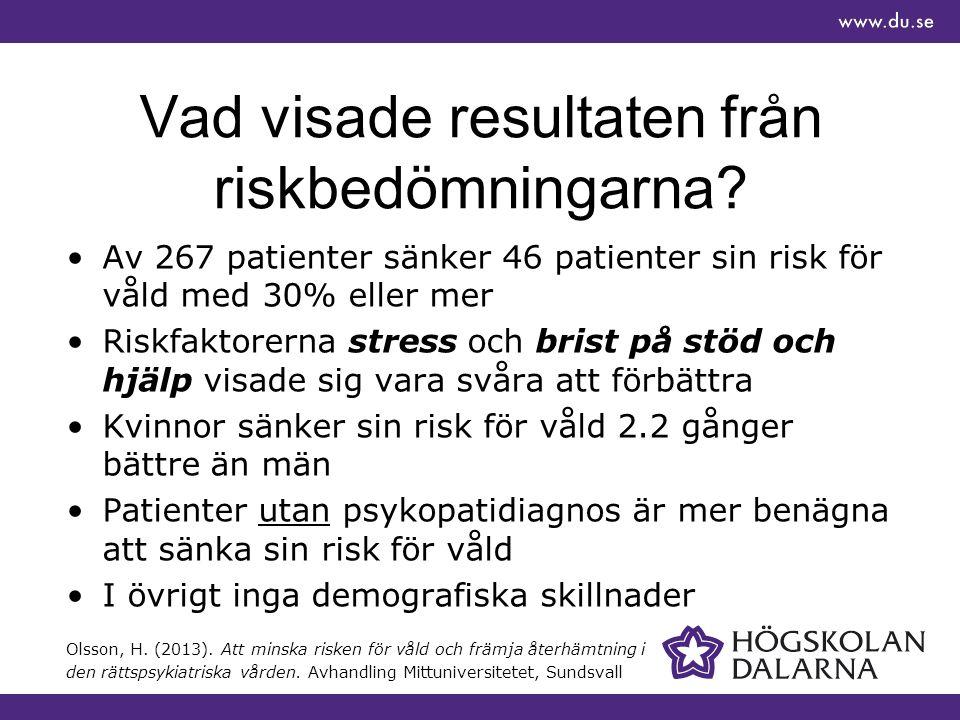 Vad visade resultaten från riskbedömningarna.