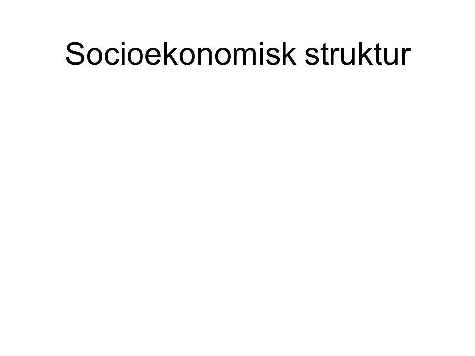 Socioekonomisk struktur