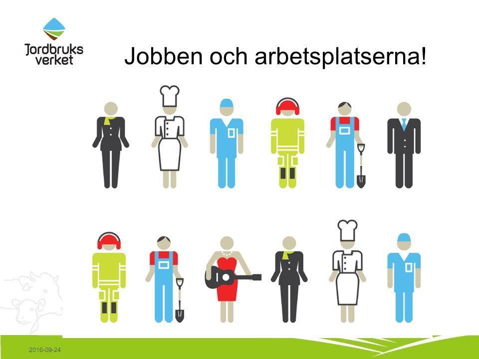 Jobben och arbetsplatserna! 2016-09-24