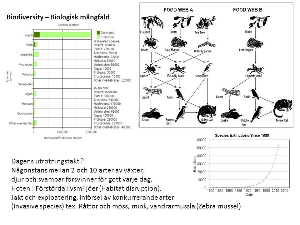 Biodiversity – Biologisk mångfald Dagens utrotningstakt ? Någonstans mellan 2 och 10 arter av växter, djur och svampar försvinner för gott varje dag.