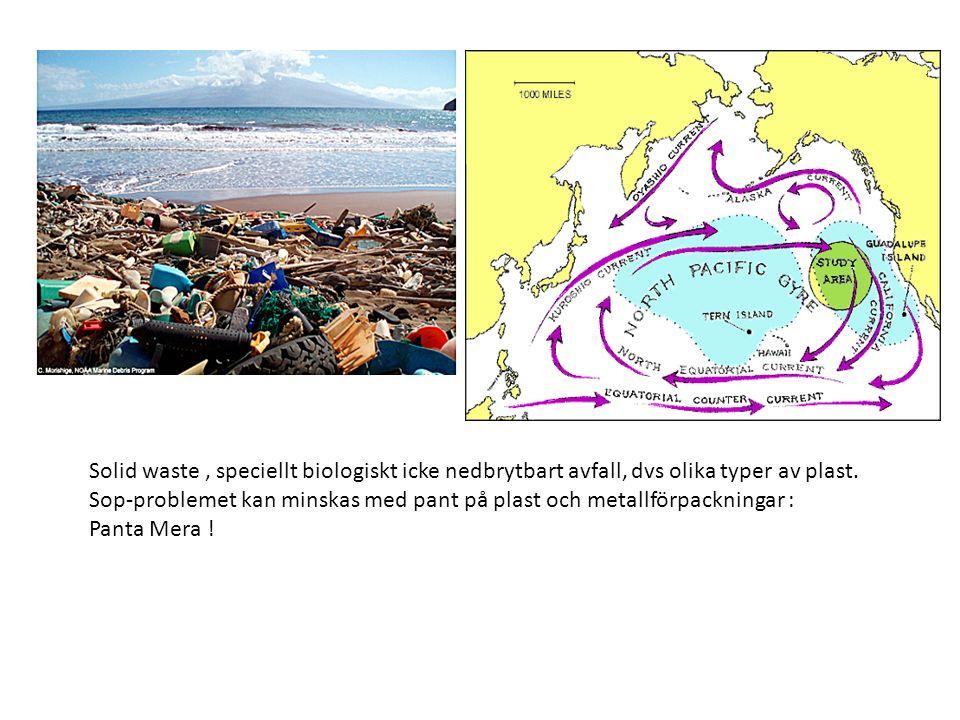 Solid waste, speciellt biologiskt icke nedbrytbart avfall, dvs olika typer av plast. Sop-problemet kan minskas med pant på plast och metallförpackning