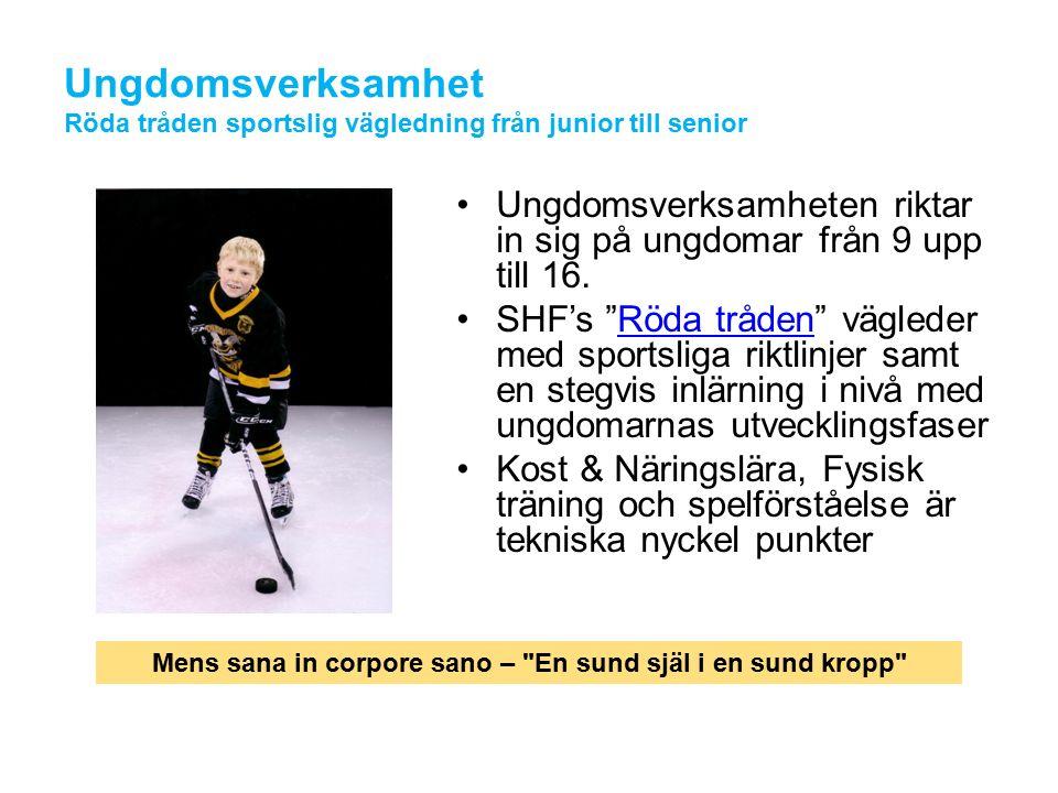 Lag och Individ utveckling Årliga camp arrangemang –Ex.