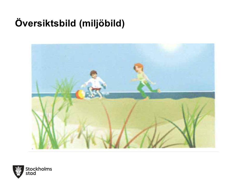 Översiktsbild (miljöbild)